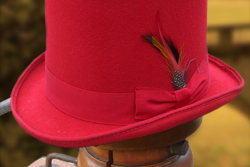 Tophat-red-thumb